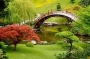Thé parfumé Jardin Japonais