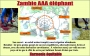 Zambie AAA éléphant