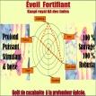 Eveil fortifiant