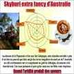Skyburi extra fancy d'Australie