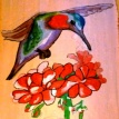 Thé parfumé L'envol du Colibri