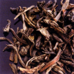 (Chine) Tarry Lapsang Souchong